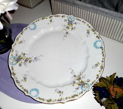 C.T. Altwasser Porzellan - Große Prunk Platte rund / Blumenmotiv Schlesien