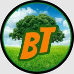Bargain Tree LLC