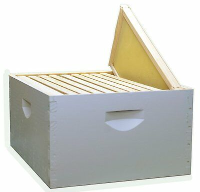 Assembled 2 X 10 Frame Be Hive Kit Painted Wood Frames 9 58 Keepers Honey Bees