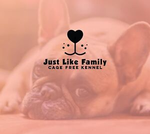 Just like family (Cage Free Kennel and Dog Day Care)