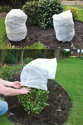 Small Trees /& Shrubs 25 metre roll Windhager Jute Winter protection for Plants