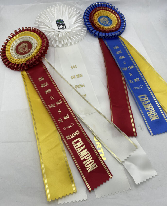 HORSE SHOW RIBBONS 1st PLACE CHAMPIONSHIP EQUESTRIAN DECOR RALPH LAUREN LOOK