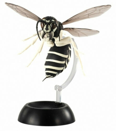 Bandai Vespinae Wasp Bee Hornet PVC Action Figure model with joints
