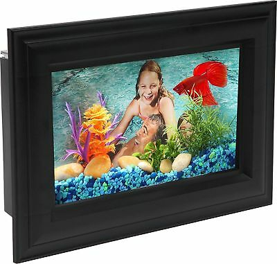 API Betta Picture Frame Fish Tank, 0.75 gallon