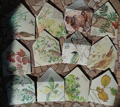 12 Handmade mini ENVELOPES 9.7cm x 7.3cm with Edith Holden Watercolours (B)