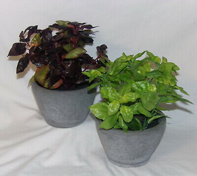 2 Artificial Potted Plants in Cement Pots Green Purple House Deck Patio (Potted Plants Deck)