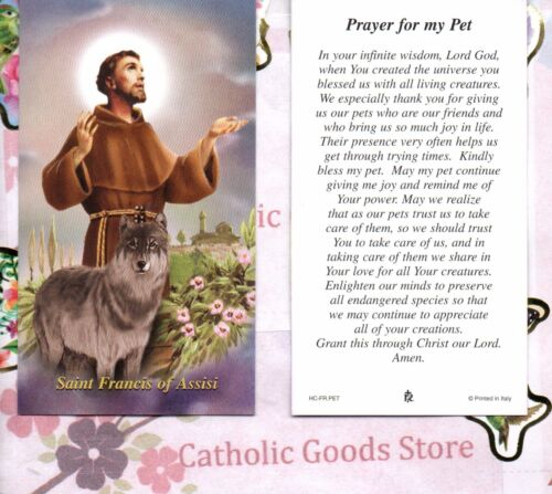Saint St. Francis of Assisi - Prayer for my Pet - Paperstock Holy Card