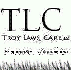 Fall Clean ups by Troy Lawn Care starting at $100