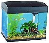 vivarium/ fish tank for sale