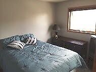 Sunny Room for Rent in Beautiful Applewood SE