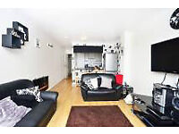 Selection of three and four bedroom properties ideal for students and professional sharers