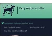 Dog Walking and Sitting. Nantgarw. Pontypridd. Caerphilly. Taffs Well. Radyr and more.