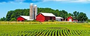 looking for a cheap farm for rent.
