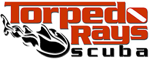 $50.00 Gift Certificate for Torpedo Rays Scuba Adventures