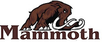 Mammoth Contracting - For all your Home Renovation needs!