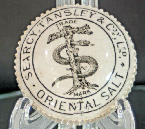 Searcy, Tansley Oriental Salt Snake wrapped around tree