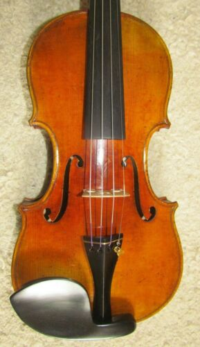 Fine new Japanese viola by HIROSHI KONO one piece back