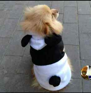 Pet Panda Suit Inglewood Stirling Area Preview