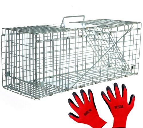 Marderfalle Lebendfalle 79cm Waschbärfalle Falle Fuchs Katzen Kaninchen XXL Groß