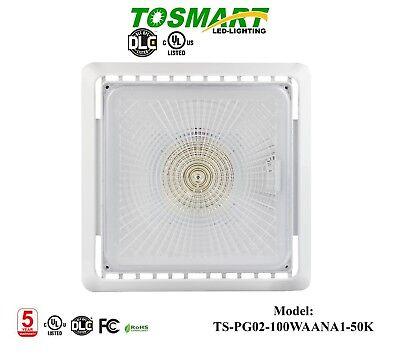 2 Led Canopy Garage Light Motion Sensor 100 Watt Canopy Gas Station Light