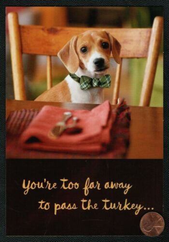Thanksgiving  Dog Puppy Bow Tie Table Chair - Greeting Card New W/ TRACKING