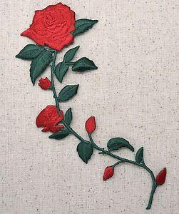 rose patch vans kopen