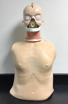 Laerdal Resusci Adult Manikin Torso Emt Cpr Medical Trainer Simulator 31002601