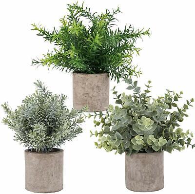3 Mini Potted Artificial Eucalyptus Plants Plastic Fake Green Rosemary -