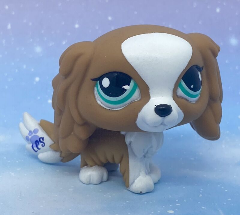 Littlest Pet Shop Authentic # 1825 Brown White King Charles Spaniel Teal Eyes
