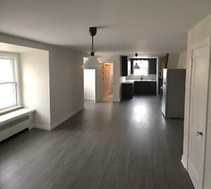 Newly renovated spacious one bedroom apartment in Burlington