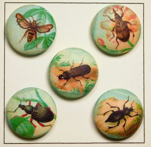 Designer Collectible Buttons Five INSECTS Beetles & a Bee by Lilac Bow Yoke