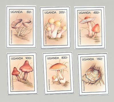 Uganda Circa 1996 Mushrooms 6v Unissued Chromalin Essays