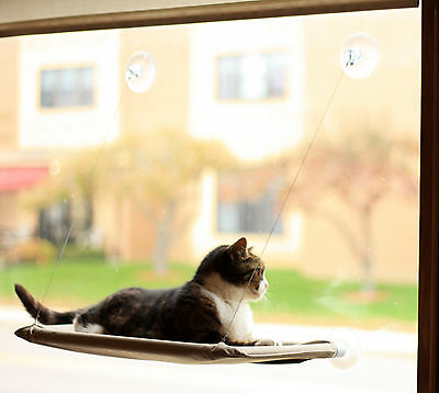 Evelots® Window Mounted Cat Bed, Window Kitty Perch, Strong & Durable, Beige