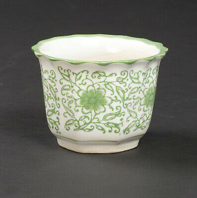 White Ceramic Planters Containers Fresh Plants Flowers Green