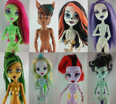 Monster High Puppen Shop 5 Basic Dolls Custom Repaint OOAK Catty Toralei Amanita (Puppen Monster High)