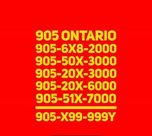 Prestigious 905 Ontario VIP Numbers For Business/office