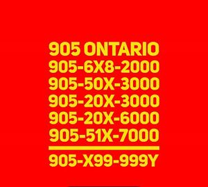 Prestigious 905 phone numbers for any business/office