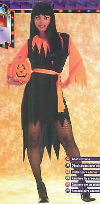 Black and Orange Basic Pumpkin Witch Adult Costume - Black And Orange Witch Costume