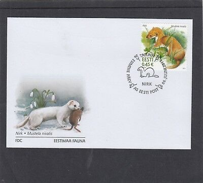 Estonia 2013 Weasel First Day Cover FDC Tallin h/s