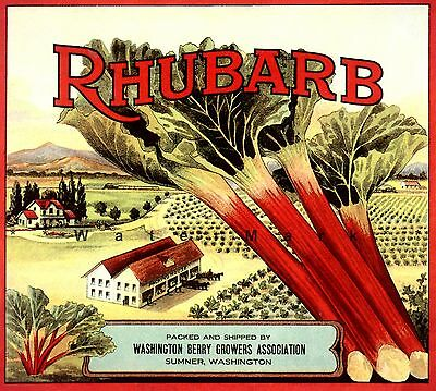 Rhubarb Crate Label Sumner WA Vintage Poster Print Retro Fruit Crate Label Art