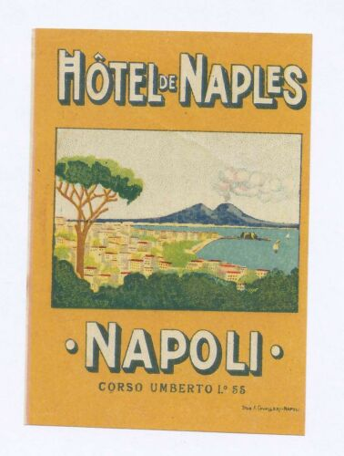 Hotel de Naples Napoli Corso Umberto Vesuvius Bay City Daytime Luggage Label