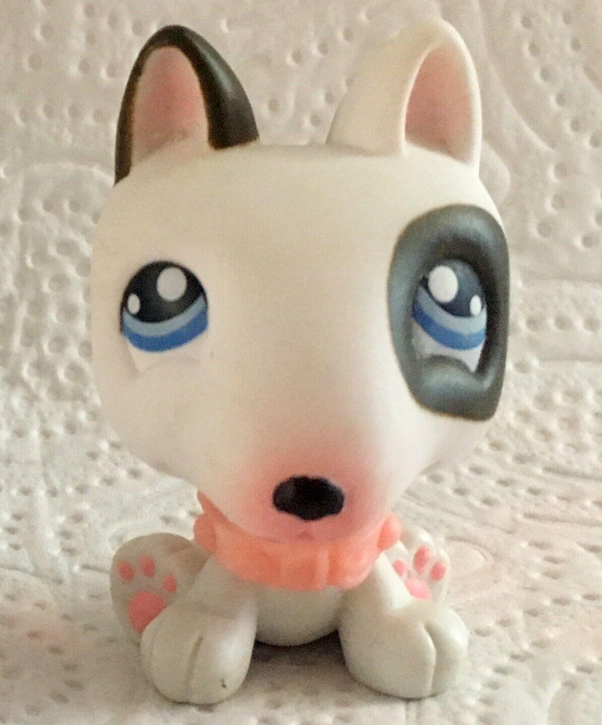 Authentic littlest petshop no # brown white bull terrier pitt dog collar chien