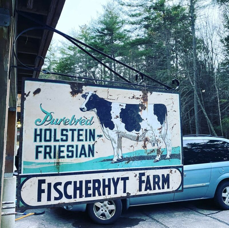 Vintage Early 2 sided Holstein Cow Beef Farm Milk Metal Sign 37x24 With Bracket