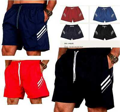 Sport Herren Shorts plus size 2XL 3XL 4XL Männer Bermuda 08 (Männer Plus Größe)