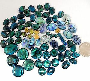 New Zealand Paua Shell Abalone Variety Cabochons Cabs quality polished parcel