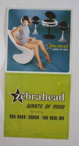 Zebrahead Waste of Mind LP Record Photo Flat 12x24 Poster