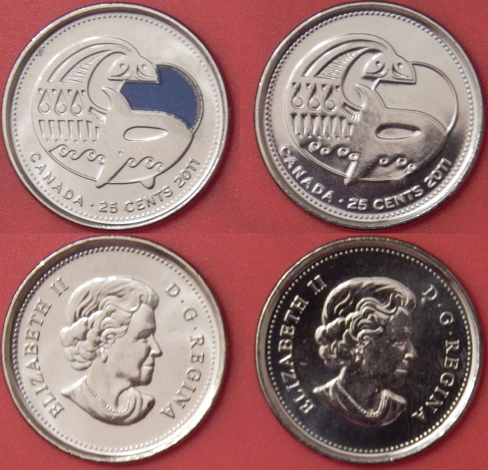 Brilliant Uncirculated 2011 Canada Whale Color & Plain 25 Cents From Mint's Roll
