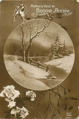 Best wishes for the next year greetings winter landscape birds roses