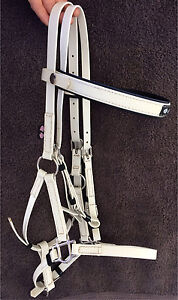 Zilco Deluxe Endurance Bridle SS fittings  in White Sandy Creek Somerset Area Preview