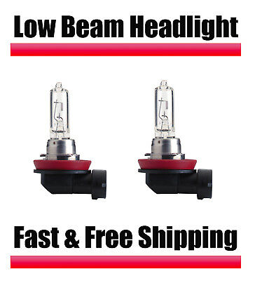 Stock Fit Halogen Headlight Bulbs for Toyota Prius 2010 2017 Low Beam All Models